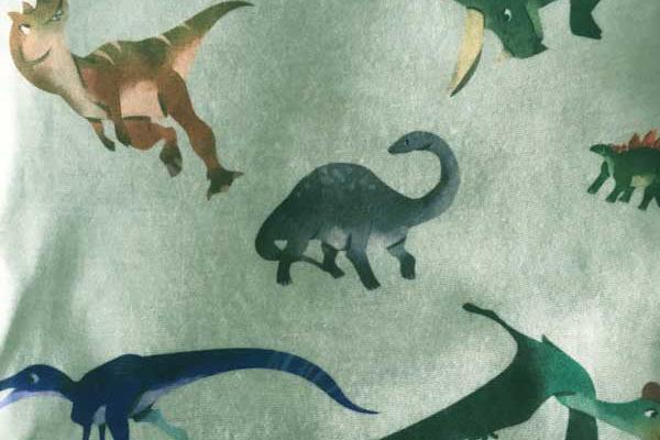 Green Dinosaur Bandana - Print Detail